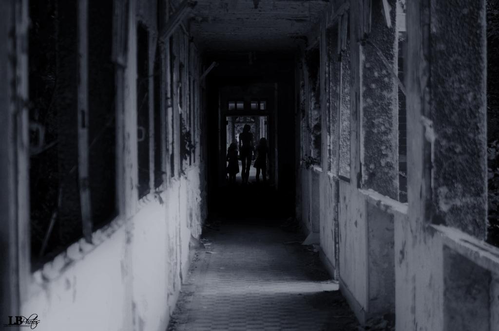 Les ombres for Prisonniers du miroir